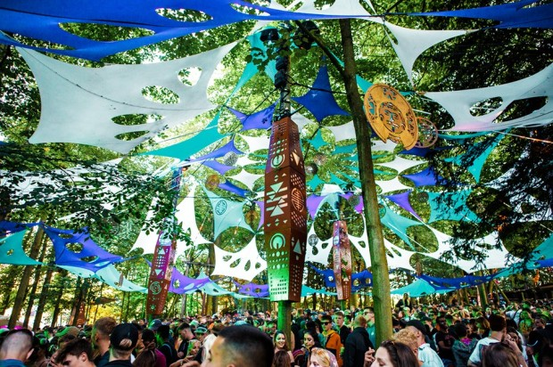 forest stage